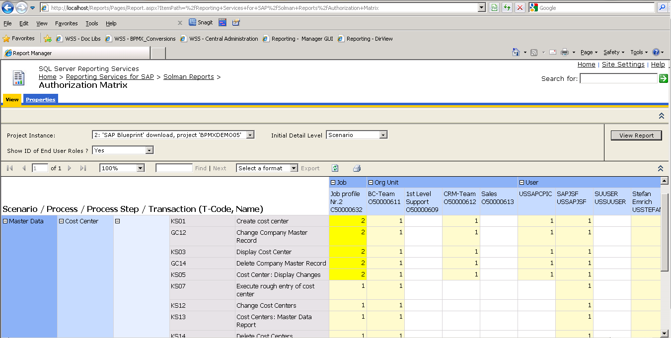 SAP Project Report Authorization Matrix