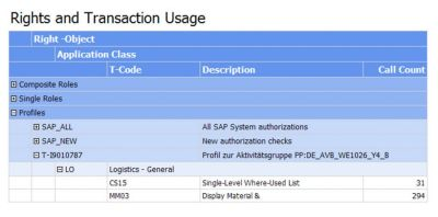 Example Web Report: Authorization Objects and Usage